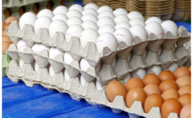 Sanitary food and beverage packaging market to grow over 6% CAGR