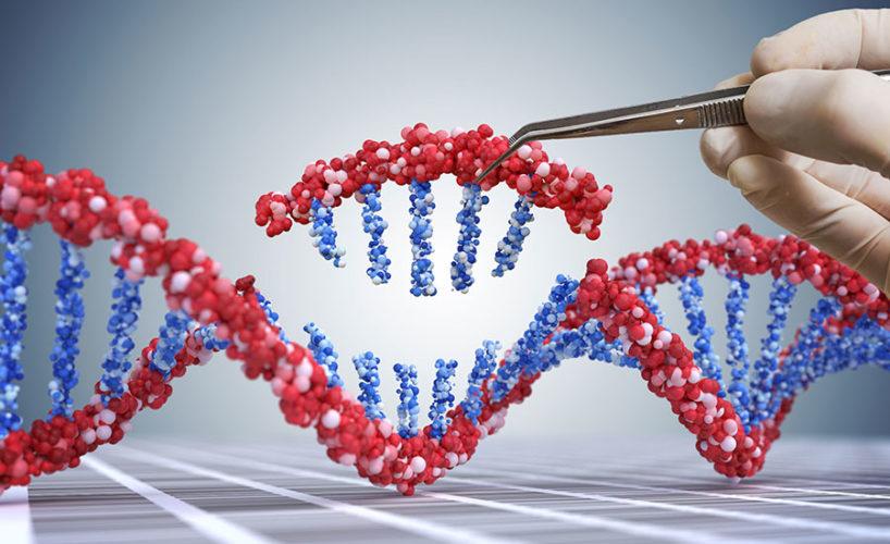 Bioengineered Food