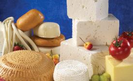 cheese3-default.jpg