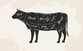 cow meat diagram