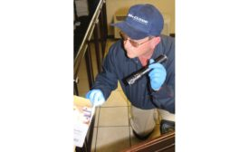 Exclusive interview: Q&A with McCloud Services, on how to recover from a poor pest management plan