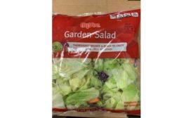 Hy-Vee, ALDI salad recalls due to possible Cyclospora infection
