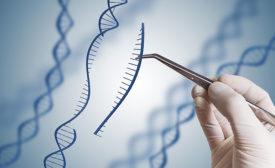 Genetic Marking