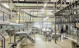 Sanitary Food Processing Facility