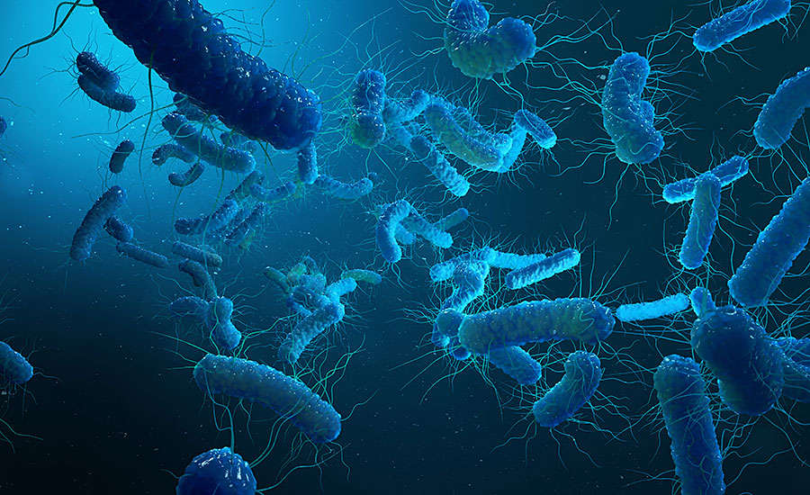 Microbiological Contaminants