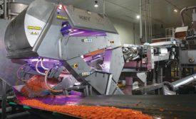 VERYX B140 bulk product sorter