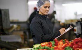 food safety audit