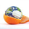 orange peel and earth
