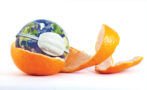 orange peel and earth