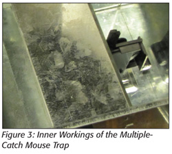 Inner Workings of the Multiple-Catch Mouse Trap