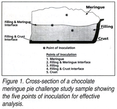 Cross-section of a chocolate merinque pie challenge study sample showing the five points of inoculation for effective analysis