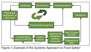 GFSI's Role in Harmonizing Food Safety Standards - Food