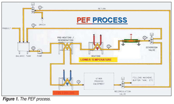 Figure 1. The pulsed electric field process