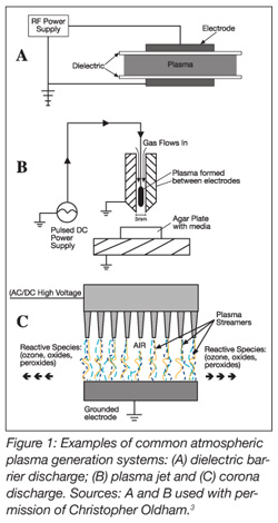 Atmospheric Plasma Technology In The Meat Industry Food