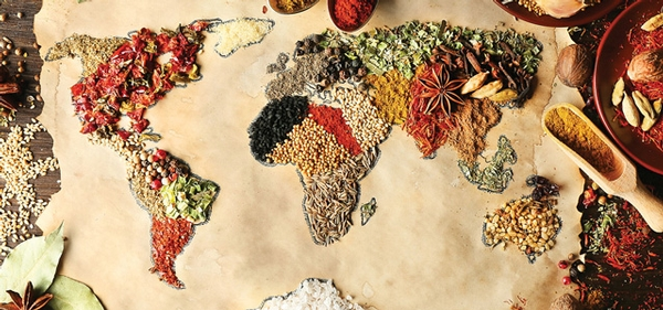 Global Partnerships in Food Safety