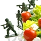 Lessons Learned from Military History Aid Food Defense