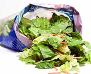 Study Links Temperature Abuse to Pathogen Growth in Bagged Salad
