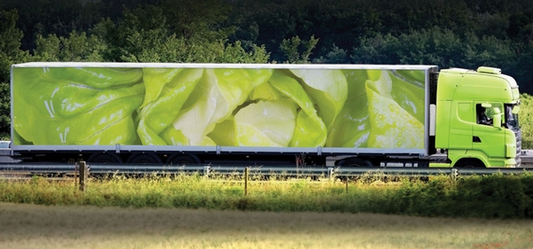 The Impact of Temperature and Routing on Produce Shelf Life: Trucking's Role in the Blame Game