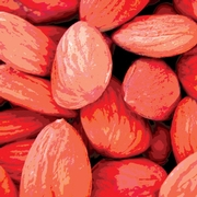 Cooperative Investigation Response to the 2004 Salmonella Enteritidis Outbreak from Raw Almonds