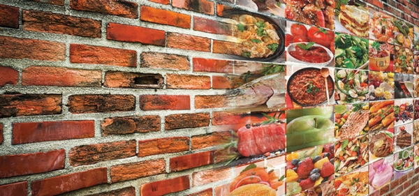 Building an Integrated Food Safety System One Brick at a Time