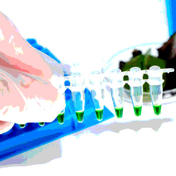 How Lims Enables The Traceability Required To Protect Food