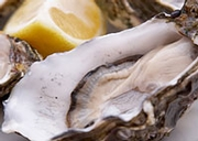 Food Standards Agency Issues Call for Research on Removing Norovirus from Oysters