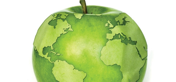 Food Safety through a Global Lens