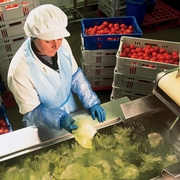 A Proven Solution to Fresh Produce Safety Challenges