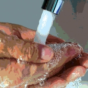 Employee Hygiene and Handwashing in Retail Foodservice Establishments