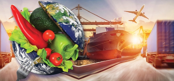 Supply Chain and Food Safety Culture