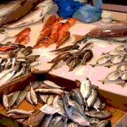 Smart Temperature Alarming for Fresh Seafood