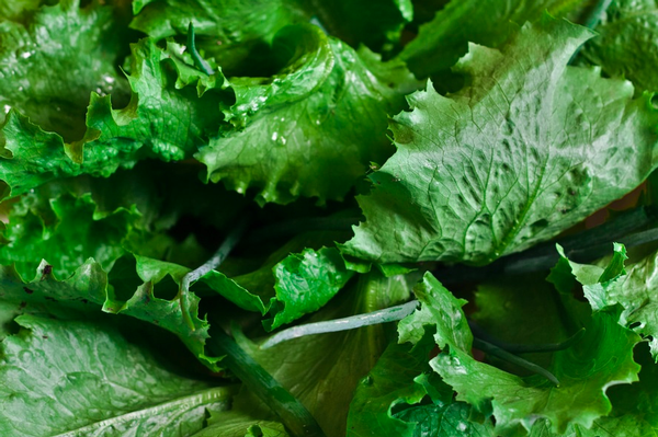 Canadians sickened by E. coli linked to romaine lettuce