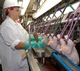 USDA Moving Forward on Plans to Increase Poultry Inspection Line Speeds