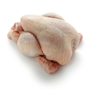 17 Illnesses and 1 Death in Kosher Chicken Salmonella Outbreak
