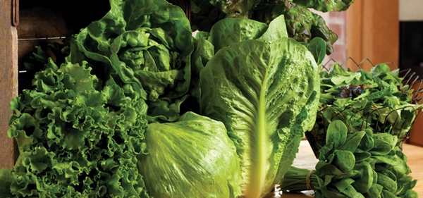 The Leafy Greens Marketing Agreement: 5 Years Later