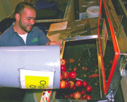 Organic Produce Distributor Composts Solid Waste into Wastewater In-House