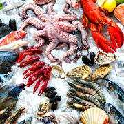 Use of Critical Control Points in Florida Seafood HACCP Plans