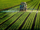 New Testing Application Advances Glyphosate Detection in Food Products