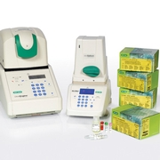 Real-Time PCR Test Kit Provides Faster Time to Results