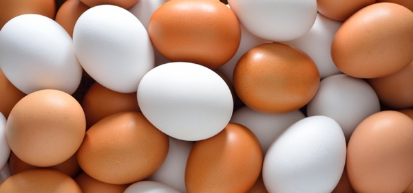 A Closer Look at Egg Safety