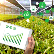 Advancing Food Safety with Technology and Traceability