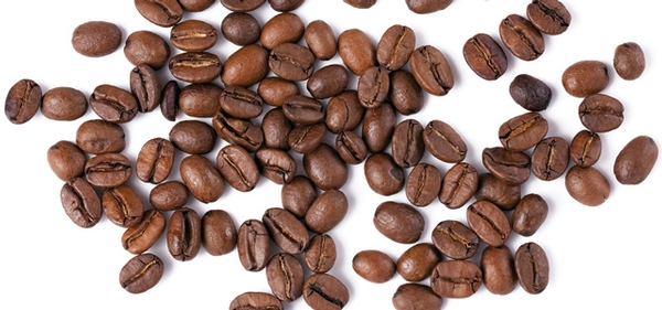 Organic Coffee Roasters: Ensuring Safe Coffee