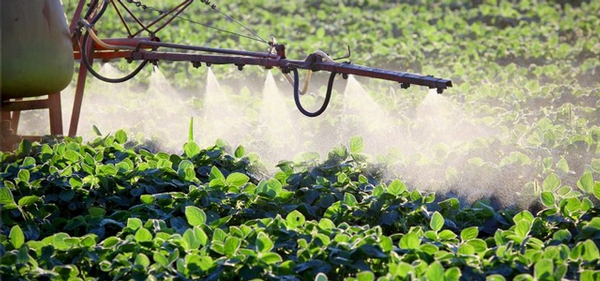 Dealing with Pesticide Residues on Foods