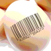 The Importance of Food Traceability