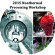 2015 International Nonthermal Processing Workshop