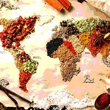 Global Food Safety Curricula Initiative Update Food