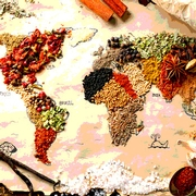 Global Food Safety Curricula Initiative Update