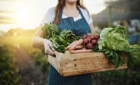 Growers-1097842636.jpg