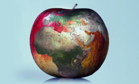 apple with globe superimposed