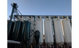 Case study: C&M Seeds expansion boosted by self-cleaning tubular chain conveyor from Luxme